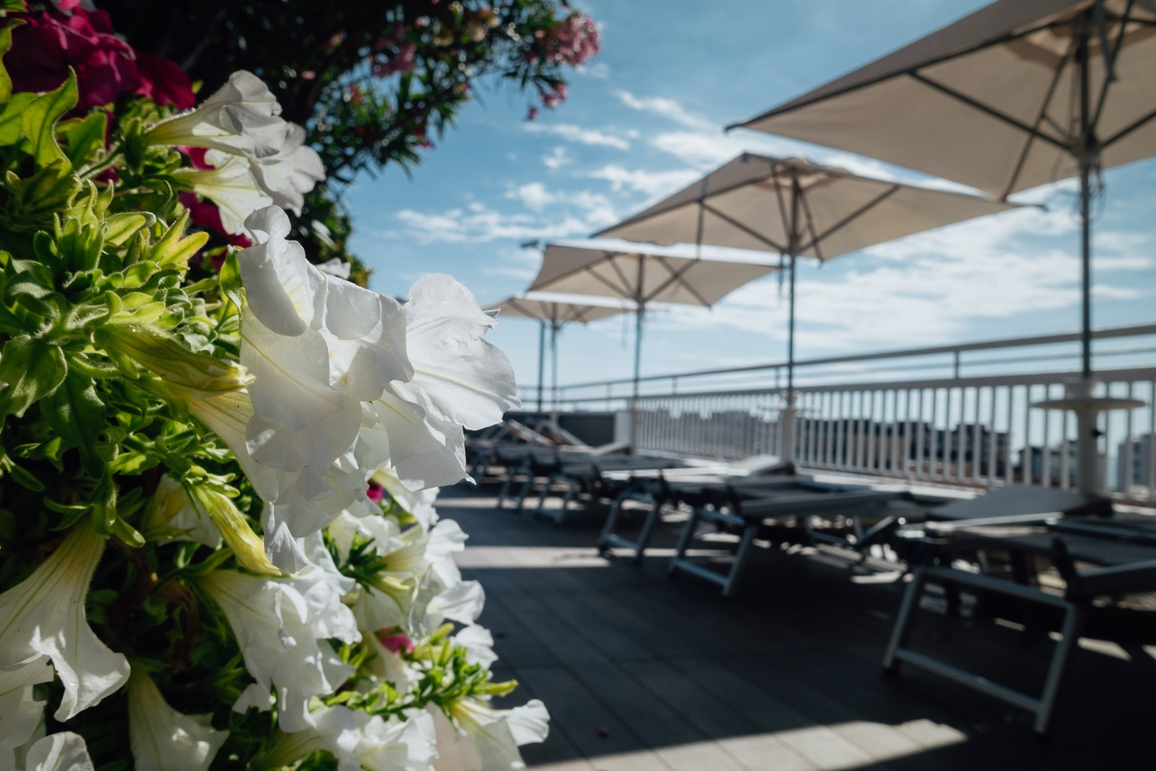 Piscina Albergo piscine Hotel Principe Palace a Jesolo Lido VE Piazza Mazzini